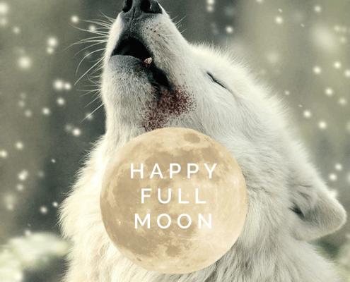 Volle maan van de langste nacht 30 december 2020