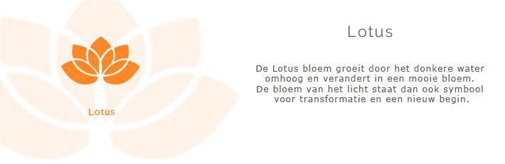 lotus symbool betekenis